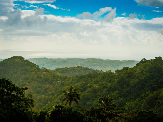 File photo provided by the United Nations Educational, Scientific and Cultural Organization (UNESCO) shows the view of mountains from Hayfield in Jamaica's Blue and John Crow Mountains National Park. The UNESCO listed Jamaica's Blue and John Crow Mountains National Park as world heritage on July 3, 2015. (Xinhua)