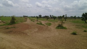 wpid-An-area-of-the-land-in-Taraba-state-north-eastern-Nigeria-that-farmers-have-been-evicted-from-300x170.jpg