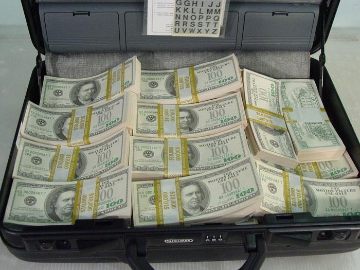 Wpid Dollar Case