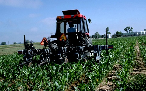 Sino-Latam Agricultural Cooperation Gains Ground