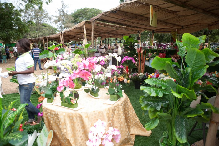 Excerpt from 2013 Ghana Garden and Flower Show.