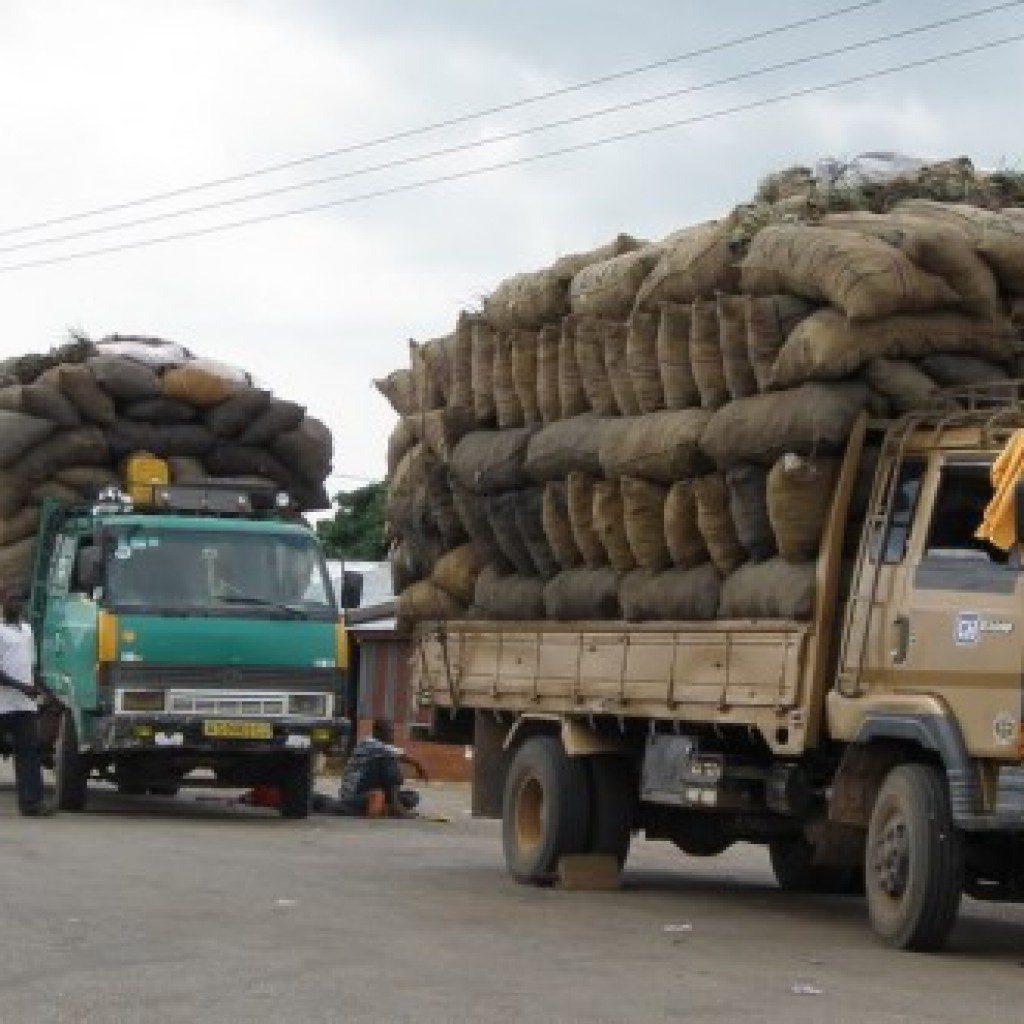 Axle Load Limits : Haulage trucks now a death trap