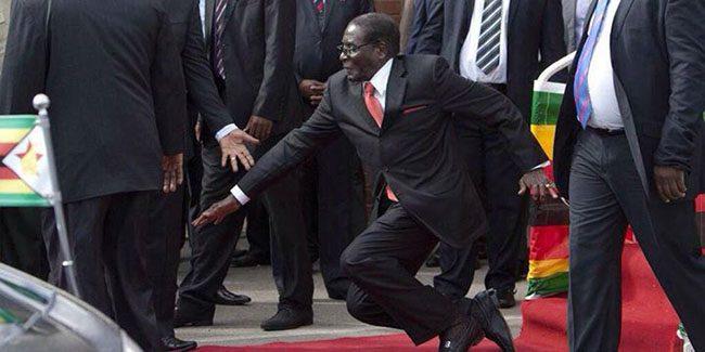 Mugabe fell
