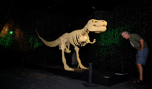 """A man stands besides the artwork """"Dinosaur"""" by Nathan Sawaya, which consists of most Lego bricks of 80,020, in Johannesburg, South Africa, on April 6, 2015. The largest Lego artworks exhibition in Africa """"The Art of the Brick"""", which shows more than 70 Lego artworks made by American artist Nathan Sawaya, are scheduled to be held here from April 3 to August 2, 2015. (Xinhua/Zhai Jianlan)"""
