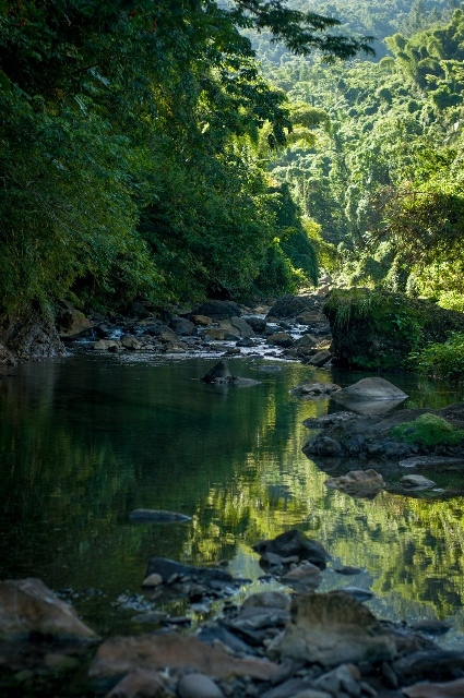 File photo provided by the United Nations Educational, Scientific and Cultural Organization (UNESCO) shows the Buff Bay River in Jamaica's Blue and John Crow Mountains National Park. The UNESCO listed Jamaica's Blue and John Crow Mountains National Park as world heritage on July 3, 2015. (Xinhua)