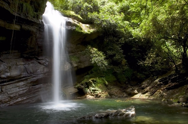 File photo provided by the United Nations Educational, Scientific and Cultural Organization (UNESCO) shows the Nanny Falls in Jamaica's Blue and John Crow Mountains National Park. The UNESCO listed Jamaica's Blue and John Crow Mountains National Park as world heritage on July 3, 2015. (Xinhua)