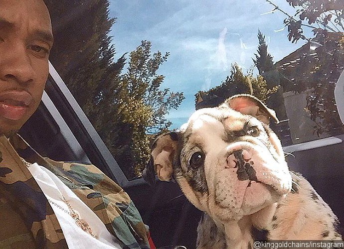 kylie-jenner-and-tyga-receive-new-50k-puppy-from-friend