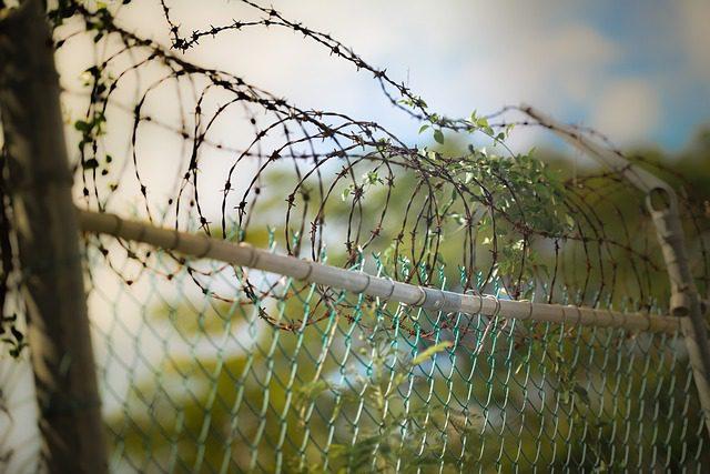 wire border