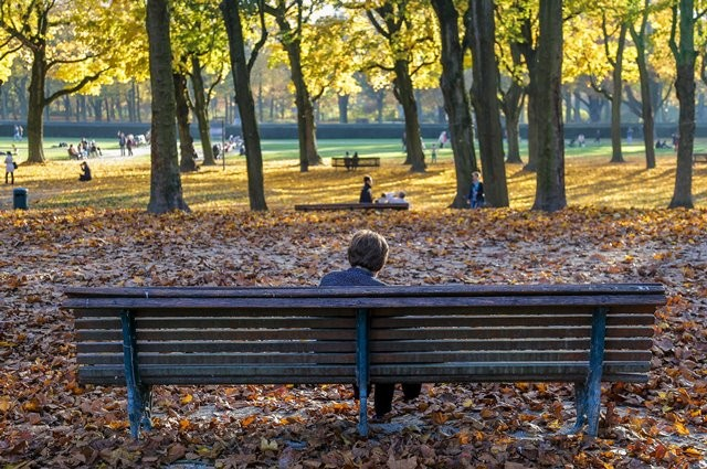 Local residents enjoy the last shining days of Autumn in Brussels, capital of Belgium, Oct. 31, 2015. (Xinhua/Zhou Lei)