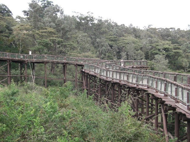 image by www.kws.go.ke