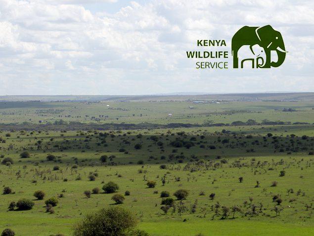 Kenya Wildlife Service (KWS)