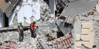 Photo taken on Aug. 24, 2016 shows rescuers and a sniffer dog working after the earthquake in Amatrice, central Italy. The death toll from a powerful earthquake in central Italy has risen to 247, Italian authorities confirmed early on Thursday. (Xinhua/Jin Yu)