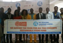Food4all YALI Cohorts Sustainable Farms Fund