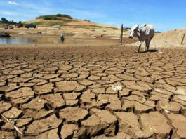 The debilitating impact of climate change