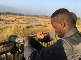Foreign journalists observe the Yeya Lake Wetland Reserve in Yanqing district on October 19. (Photo by Wang Hailin from People's Daily)