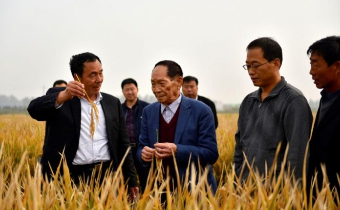 Yuan Longping (second left), the