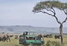 Travers take a tour of the Mara, image courtesy: Mara Serena Lodge
