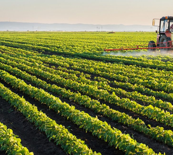 Ghana Can Boost Agricultural Development with Extension Services