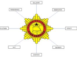 Ghana National Fire Service (GNFS)