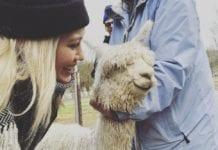 Hilary Duff and Ivan the Alpaca (c) Instagram