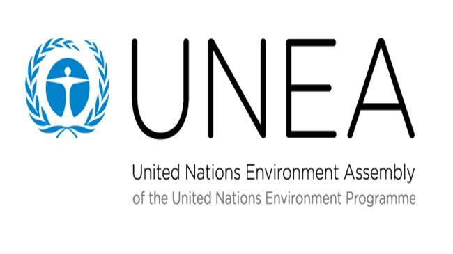 United Nations Environment Assembly (UNEA)