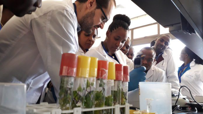 a lab session led by Dr Goncalo Ramalho E Silva, from The Natural Resources Institute, University of Greenwich, UK