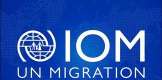 Iom Logo Standin