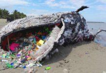 Plastics Whale