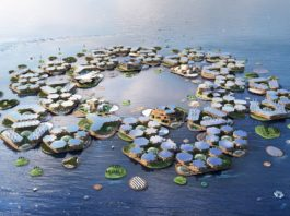 China-based Firm Envisions Floating Cities To Combat Climate Change
