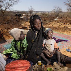 Soils in Africa