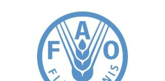 FAO Africa