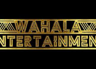 Wahala Entertainment Media Studio