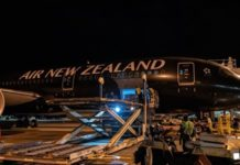 Since March 31, Air New Zealand has resumed daily cargo flights between New Zealand and China. Photo: Courtesy of Air New Zealand