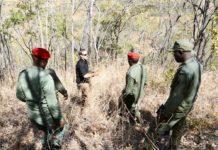 Tanzania Reinforces Anti Poaching Efforts