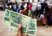 Zimbabwe Dollar