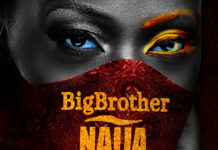 Big Brother Naija Season