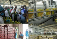 President Commissions Million Dollar Ekumfi Fruits Processing Factory