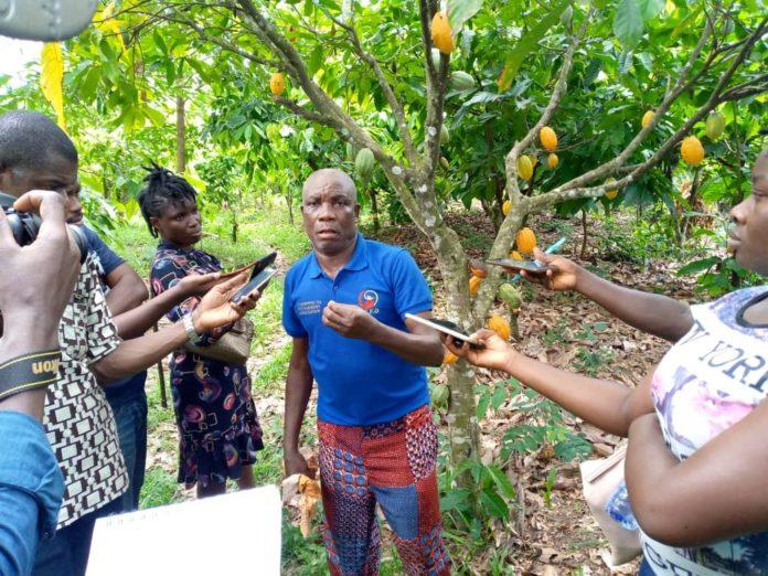 Cocoa Farmers