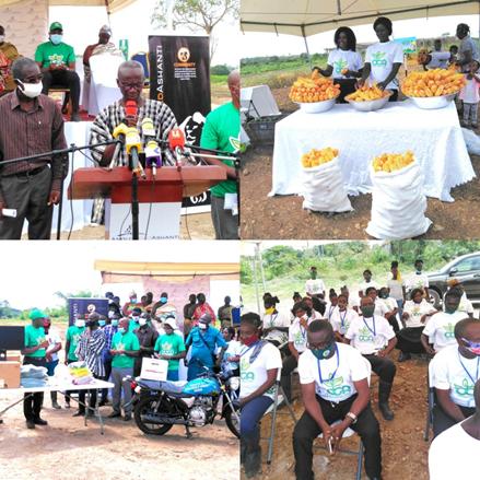Economic Programme Beneficiaries
