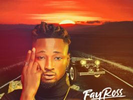 Fayross Race Cover
