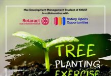 Plant Of Trees
