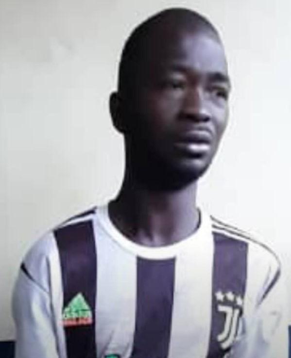Crime Suspect Arrested