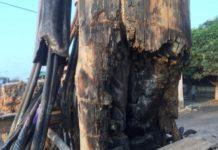 Burnt Electric Poles
