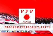 Ppp Digital Banner