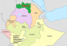 Tigray And Regions