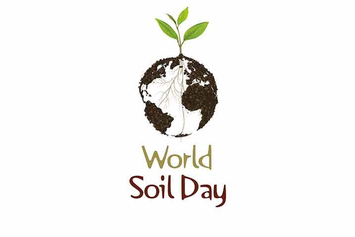 World Soil Day 2020: Connecting the dots between soil and agroecology for food security and climate action