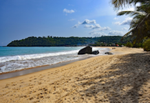 Beache