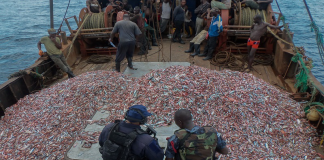 A U.S. Coast Guard law enforcement detachment member and a Ghanaian navy sailor inspect a fishing vessel suspected of illegal fishing during the Africa Maritime Law Enforcement Partnership (U.S. Navy photo by Kwabena Akuamoah-Boateng/Released) culled from https://kasapafmonline.com/2017/05/ghana-outdoor-watchdog-committees-clamp-illegal-fishing/