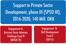 Business Sector Advocacy Challenge Fund (BUSAC)