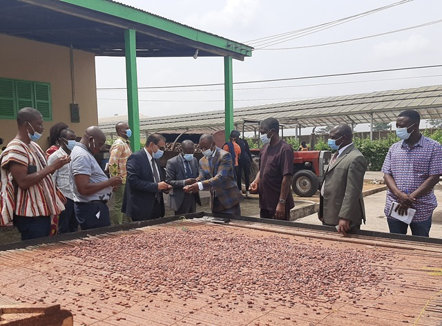 cocoa industry